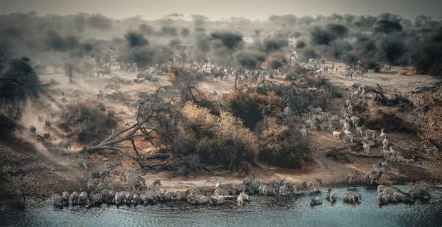 6 Nächte Makgadikgadi, Nxai Pan  & Okavango Delta Sommer Sonderange..
