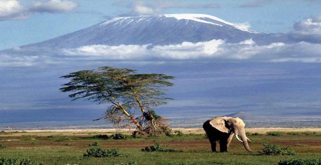 5 Tage Safari durch Nördliches Tansania..