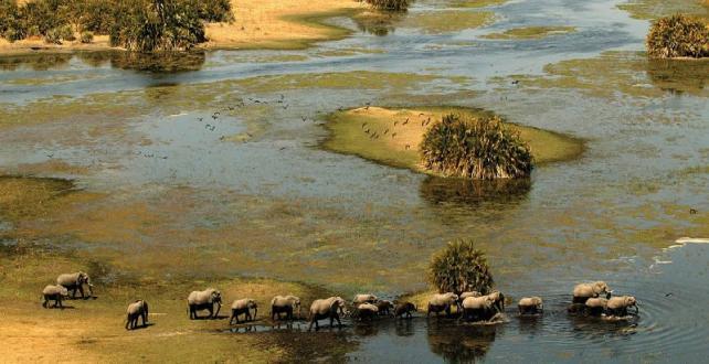 9 Tage Botswana & Viktoria Falls Mobile Abenteuer Safari ..